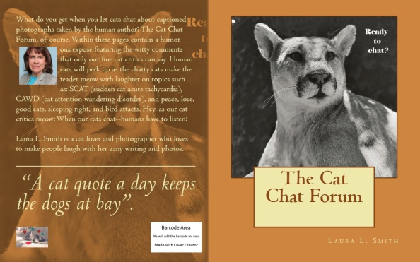 BookCoverPreview chat chat forum 10-2013